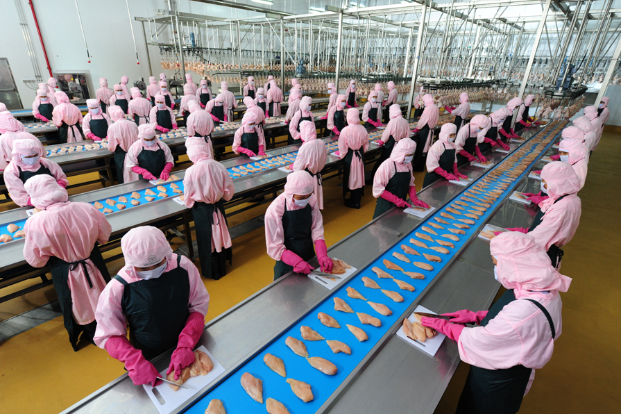 [xkldquocte] Xuẩt khẩu lao động Nhật Bản - Tuyển 40 nữ đi đơn hàng chế biến thịt gà quay tại Aomori - Nhật Bản 2019