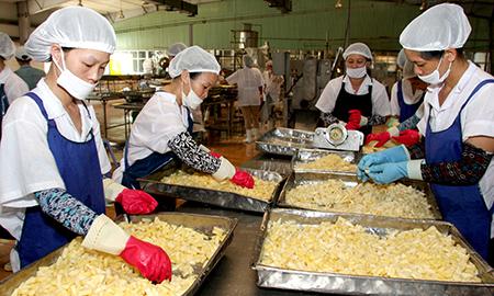[xkldquocte] Xuẩt khẩu lao động Nhật Bản - Tuyển 80 nam nữ đóng gói cơm hộp tại CHIBA - Nhật Bản 2019